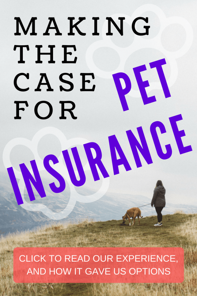 My experience with pet insurance and how it is helping us save our dog.